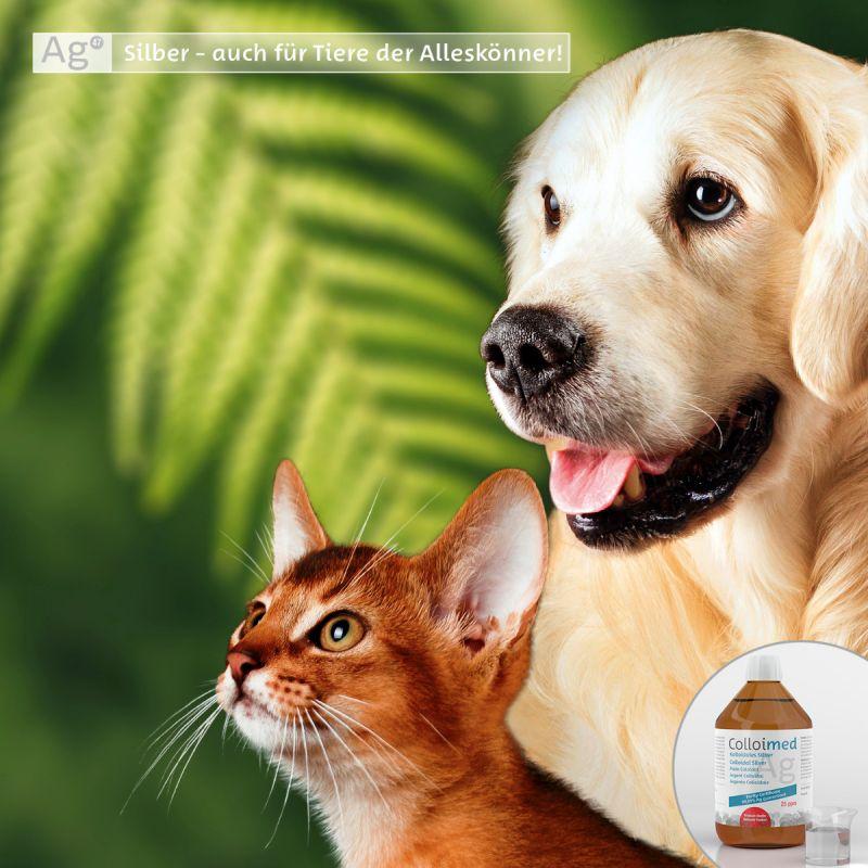 Colloimed kolloidales Silber 500ml - Gesundheit für Hund und Katze